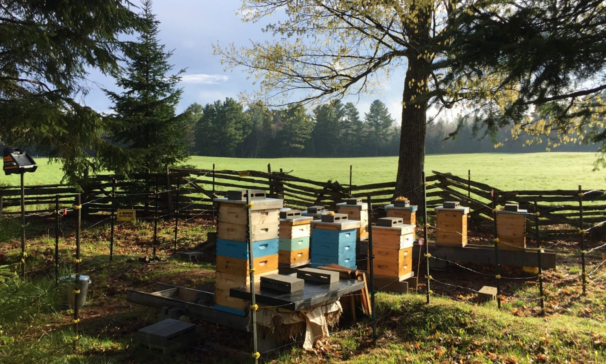 Muskoka Parry Sound Beekeepers Association