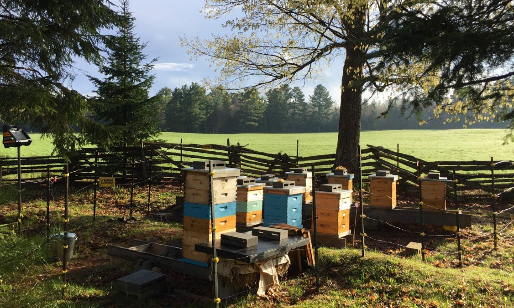 Muskoka Parry Sound Beekeepers Association